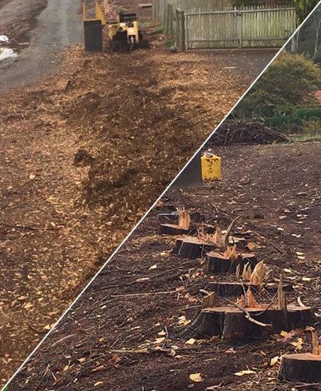 Tree Stump Removal Melbourne